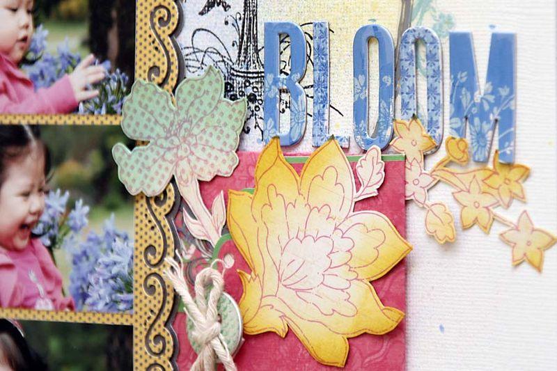 Bloom d3
