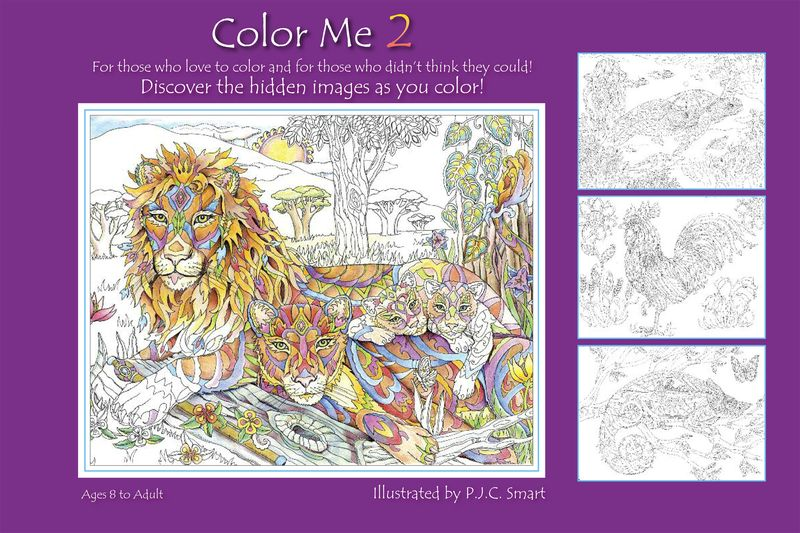 Color Me 2_Coversf2