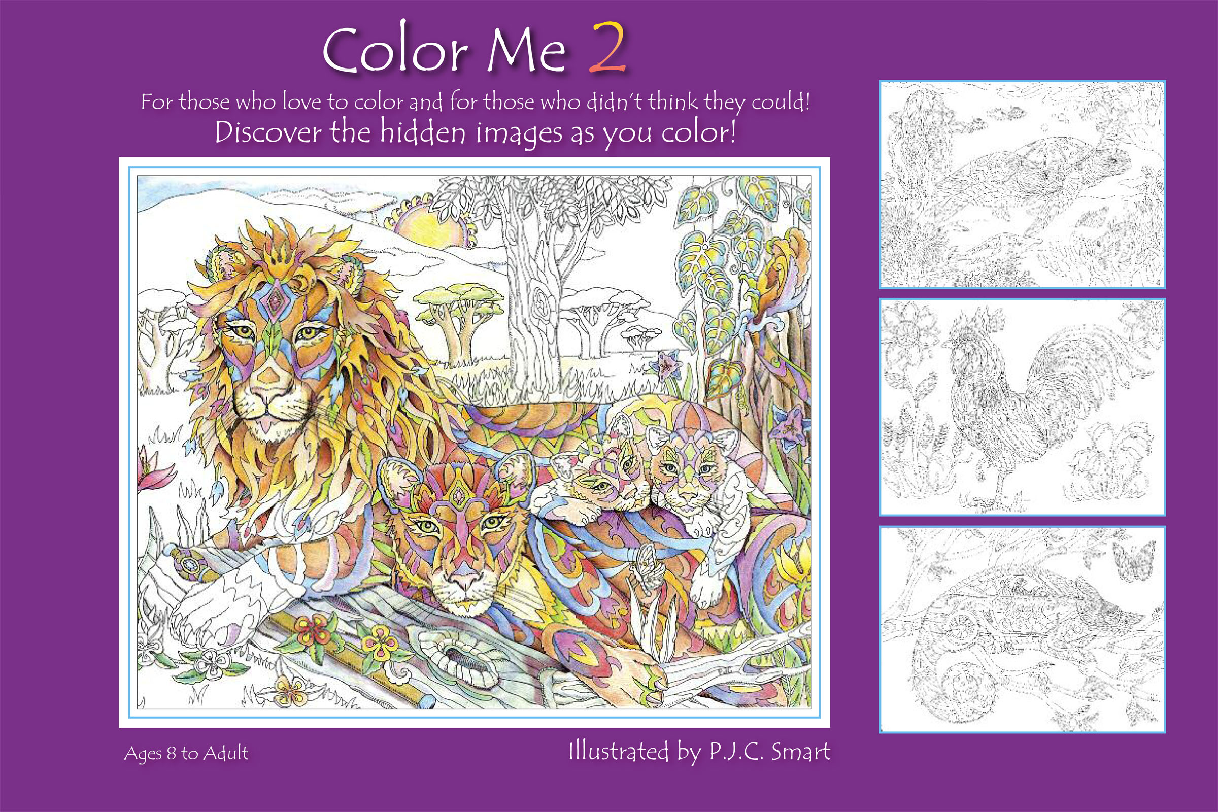 color me 2_coversf2 - Color Me Beautiful Book