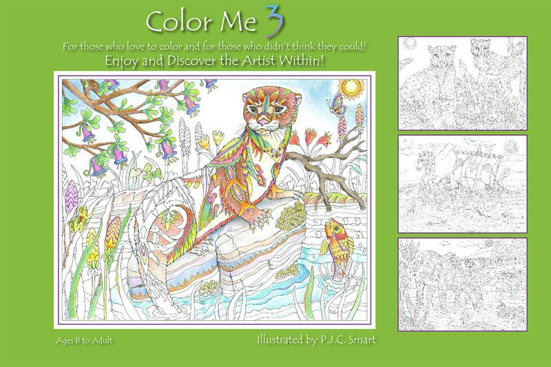 Color Me 3_Coversf